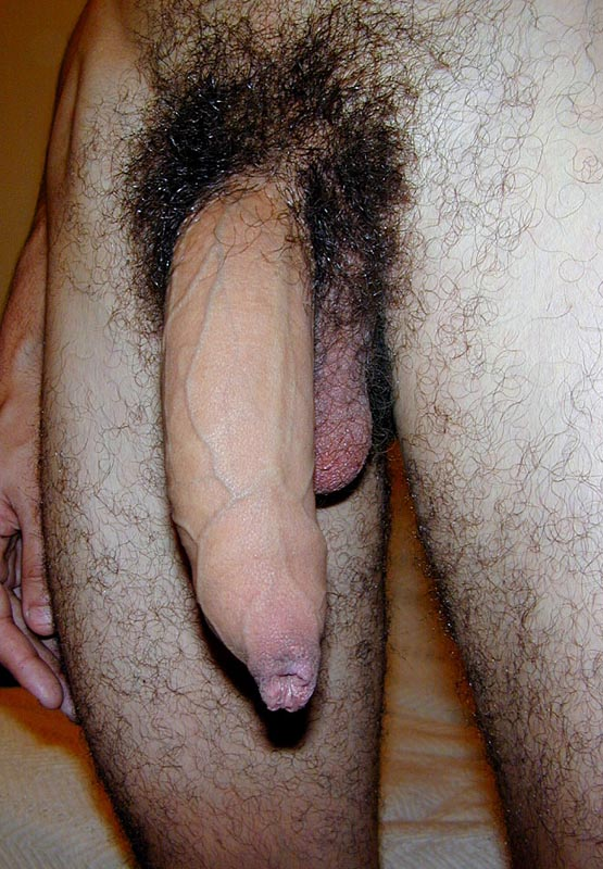 big hard gay hairy cocks